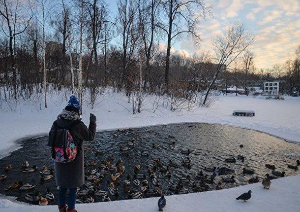 У столичных водоемов поставили препятствия для выезда машин на лед